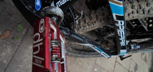 crankbrother mallet dh pedals on lapierre spicy